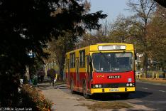 Autobusy 2008
