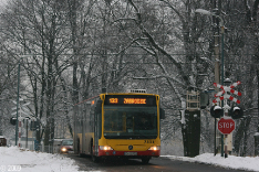 Autobusy 2009