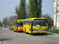 Autobusy 2011