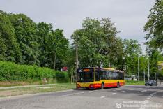 Autobusy 2019