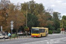 Irisbus Crossway 12LE #41
