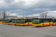 Mercedes-Benz O530 #7333 i Mercedes-Benz O530 #7329