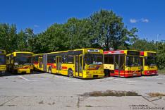 Jelcz M121M #9550, Jelcz M181MB #8500, Volvo B10BLE 6x2 #8038 i Jelcz M121M #9539